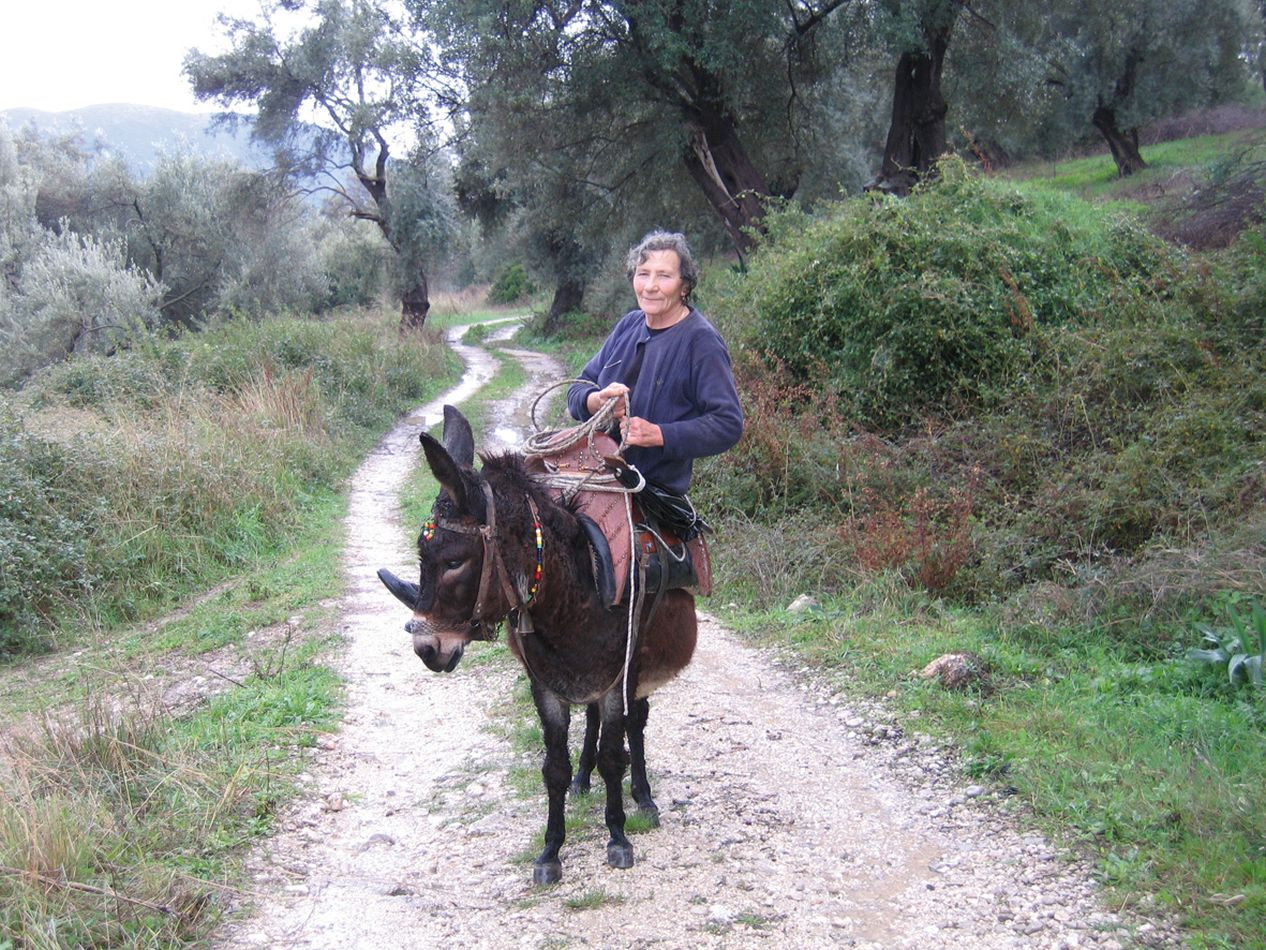 Vassiliki, Lefkada | Ideal place for hiking, cycling, horse-back riding